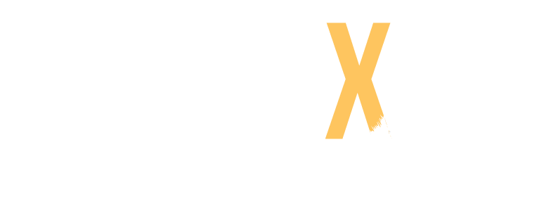 Picture of a fox